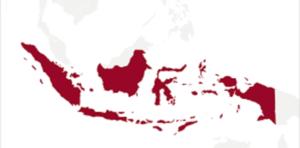 Indonesia M2M market