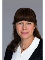 Environment Minister Asa Romson announced major investments into smart grids,