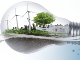 electric grids flexibility