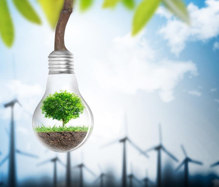 renewable energy; energy management