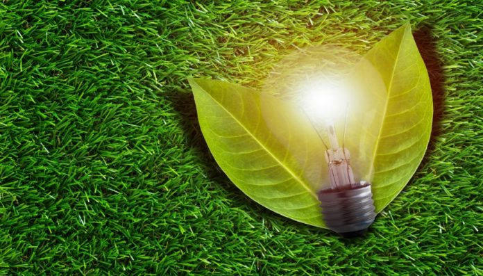electric cooperative