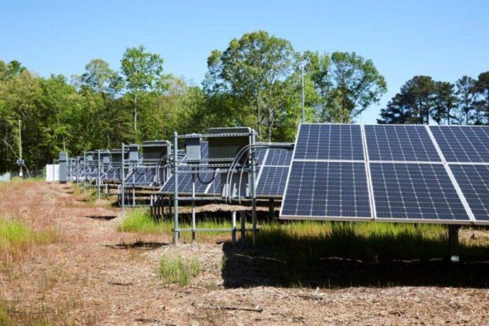 NSW solar