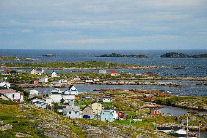 Tender Newfoundland