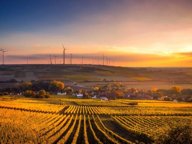 IEA EDF Renewables
