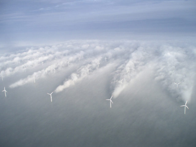 Offshore wind forecast