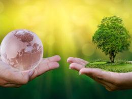 amazon ceo sustainability