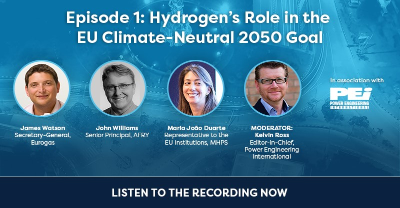 Hydrogen's Role in the EU Climate-Neutral 2050 Goal
