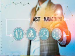 Earth Observation and asset management