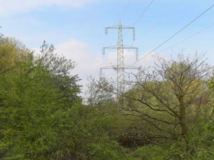 Powerline vegetation management