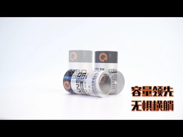 FANSO D size 19Ah Battery